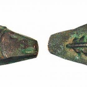 Монета-сегмент Борисфениды