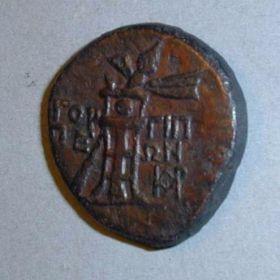 Монеты Горгиппии