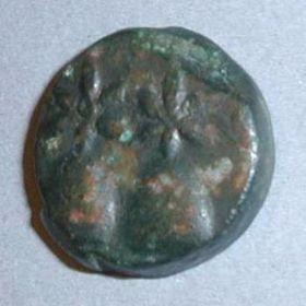 Монеты Диоскуриады
