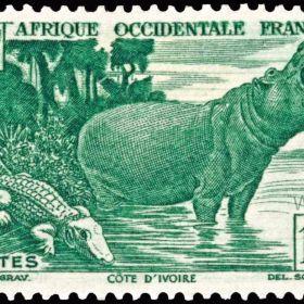 Французские колонии в Африке