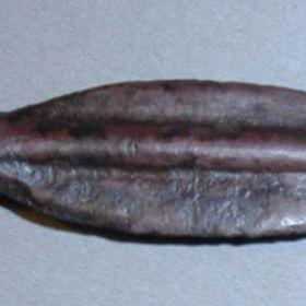 Березанская монета-стрелка