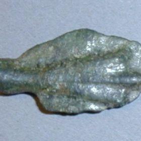Ранние монеты Керкинитиды