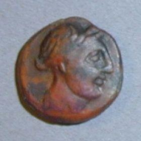 Монета из Ольвийского полиса