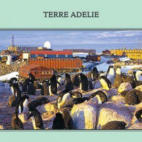 Почтовые открытки TAAF