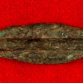 Борисфенида монета-стрелка