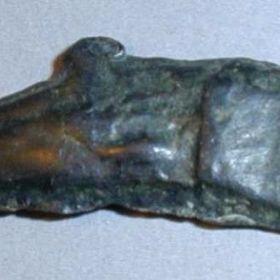 Эпиграфный дельфин АРІХО