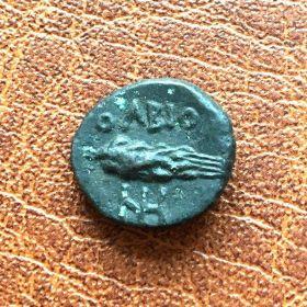 Ольвия. Халк. 140-130  гг. до н.э.