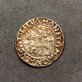 Польша. Полугрош 1556 г.